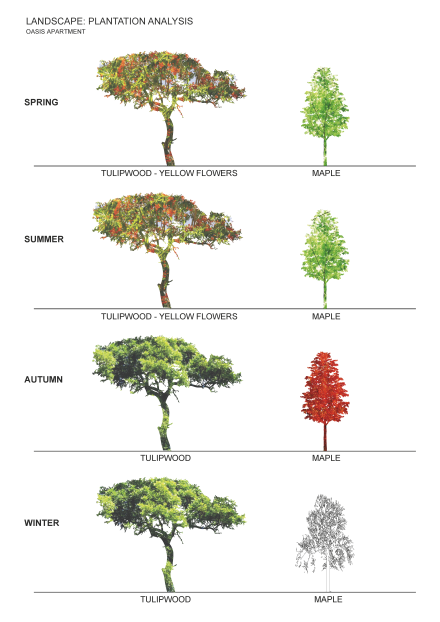 [Design Studio] Plantation Analysis